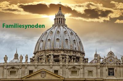 Katolske familieorganisationer om Synodens midtvejsrapport: Et forræderi