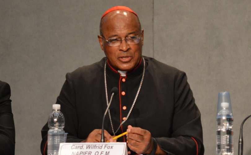 Den sydafrikanske kardinal Wilfrid Napier står frem med kritik af synodens ledelse