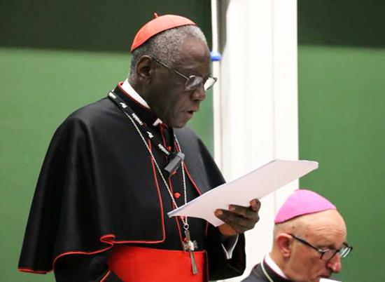 Kardinal Sarah udfordrer Vatikanet med et udspil om liturgien