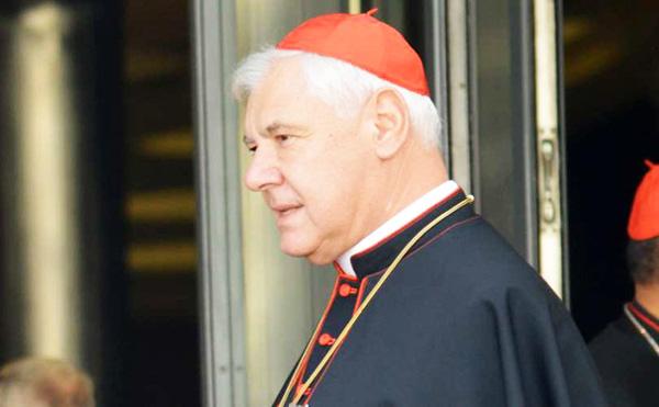 Kardinal Müller: USA's valg er afgørende for, om demokrati eller diktatur skal styre verden